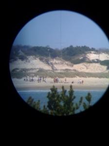 beach-transit1
